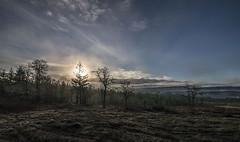 meadow (retsoced) Tags: coopermtn beaverton oregon naturepark trails pacificnw