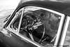 Dreams for Sale (Bryce Womeldurf) Tags: classic12hour hsr historicsportscarracing pistonsandprops sebring sebringinternationalraceway historicracecar motorsports racecar racetrack racing porsche 1963 356 356b florida steeringwheel