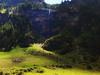 TASSONI MASSIMO (Tassoni Massimo) Tags: paesaggio paesaggi piante photo photoart paysage plantes pianta cascate cascata prati prato abeti bosco boschi