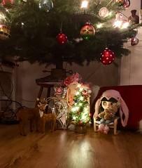 Merry Christmas 🎄💫❤️