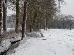 On a snow walk in the neighbourhood (6) (joeke pieters) Tags: 1370661 panasonicdmcfz150 woold winterswijk achterhoek gelderland nederland netherlands holland sneeuw snow snowscape landschap landscape landschaft paysage