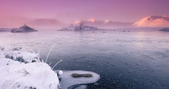 A Pink Haze (PeterYoung1.) Tags: atmospheric beautiful colours dawn glencoe hills highlands landscape mist mountains nature peteryoung1 pink rannochmoor scenic scotland sunrise snow cold uk water ice
