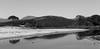 Plage de Saleccia (baptiste.lasnier) Tags: corse corsica vacances paysage ciel eau pensées africain paisible montagne force
