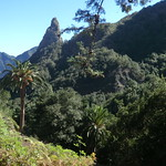 La Gomera (Spain's Canary Islands) - Hermigua Valley thumbnail