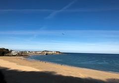 A lovely November day! (turini2) Tags: carbisbay england unitedkingdom gb