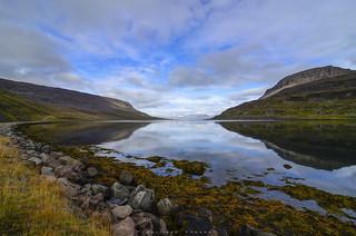 F j o r d s | Western Iceland