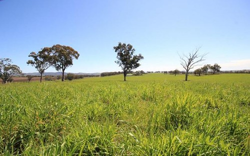 123 Springfield Lane, Gulgong NSW 2852