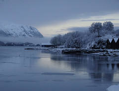 Christmas morning (Mrs.Snowman) Tags: christmas dawn morning winter ålesund sunnmøre westernnorway norway