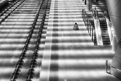 Alone (Electric Soup) Tags: shadows railway station tracks despair late chemindefer bw bengorenisadwarf platform waiting patience macaroni crying senegal