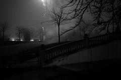 (Ibon M.) Tags: barañain noiretblanc parque parkea olentzero fuegos artificiales gabonak christmas navidades fireworks navarra nafarroa