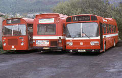 1984-09-07 UKG 808J Bristol RELL-Marshall, NWN 728N, LWN711L Leyland Nationals, 627, 728 and 711 of South Wales,  Pontardawe (John Carter 1962) Tags: bus buses nbc bristolre leylandnational