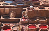 Another day at the office (Dylan H, from the road) Tags: color colour dye morocco fez fes tannery pouring leather africa