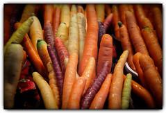 carrots (Ste_✪) Tags: eos760d ottobre2016 canada canadá quebec carote zanahorias montreal arancione orange mercato market ortaggi mercado verduras vegetables naranja