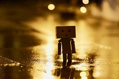 .still nothing means nothing without you. (....Natalie....) Tags: danbjuschka danboard toy golden lights