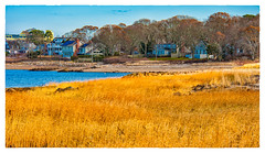 Low Tide (Timothy Valentine) Tags: fbpost 2017 ocean hct grass beach fiddlerscove 1217 falmouth massachusetts unitedstates us