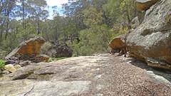 Nattai Creek _12 (Tony Markham) Tags: fortyfootfalls 40footfalls lakealexandrareserve nattaicreek creek waterfall falls sourthernhighlands bushwalk walk