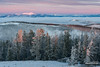 Red Mountain Morning (kevin-palmer) Tags: helenanationalforest granitebutte montana lincoln rockymountains nikond750 whitebarkpine trees early morning dawn sunrise december winter cold snow snowy frost frosty frosted clouds sunlight color colorful pink fog foggy summit peak redmountain tamron2470mmf28 rimeice inversion