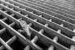 Love in a lock (Walimai.photo) Tags: black white blanco negro byn bw blanc noir branco preto lock candado amor love reja metal lisboa lisbon castelo san jorge castle