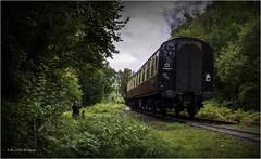 Photo op (brianac37) Tags: railway severnvalleyrailway severnvalleycountrypark highley shropshire england steamengine