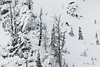 IMG_1718 (tbd513) Tags: newyears idaho snowboarding snowmobiling winter20172018