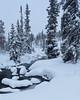 Idre II (Gustaf_E) Tags: dalarna forest gran idre landscape landskap skog spruce sverige sweden vinter woods
