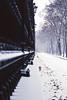 Winter in Wien 1998 (Bernhard Schlor) Tags: canon50e jahre country österreich europa burggarten austria analog diakopien europe vienna innerestadt 1998 wien 1bezirk autriche