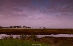 2017-12-30 - 17.39.52 - _L5B0288 - 1 (Rossell' Art) Tags: bretagne golfedumorbihan gîte paysage sarzeau