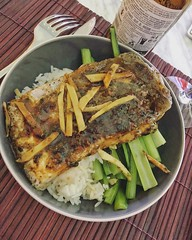 Steam #barramundi and #choysum #cooking #steaming #willyskitchen #food