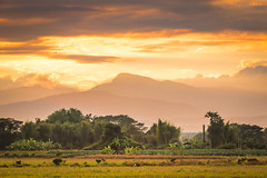 Sunset in Chiang mai (iNookz) Tags: inthanon doi above clouds view sunrise thailand chiengmai background nature sky natural holiday colorful bright travel sun vacation set cloud scenic cover soft trip cloudy atmosphere setting rise crafts airline airliner atmospheric under