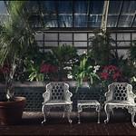 The Biltmore Conservatory (Asheville, North Carolina) thumbnail