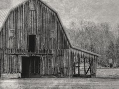 Barn Door Is Open (clarkcg photography) Tags: barn oldbarn wooden woodenbarn plank leantoo shed door open dark trees blackwhite bw thursdayblackandwhite blackandwhitethursday 7dwf