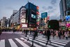 Famous Crossing Intersection Shibuya (Jérôme Wyss Photography) Tags: japan tokyo shibuya asia crossing intersection city light traffic travel tourism bustling busy building people hectic japanese rushhour citylife