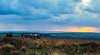 Cefn Bryn ponies watching the sunset (annachytravels) Tags: sunset gower coast water sea landscape nature scene panorama clouds swansea wales cefnbryn horse pony foal common