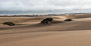 Namibia's Atlantic Coast
