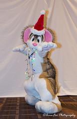 _DSC1283 (Acrufox) Tags: midwest furfest 2017 furry convention december hyatt regency ohare rosemont chicago illinois acrufox fursuit fursuiting mff2017 menagerie fursuitsaturday