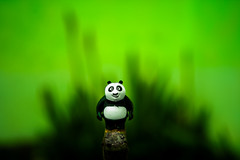 Welcome to my little world. (skybluesky43) Tags: nikon d7100 sigma 1835 art vision creative world macro bokeh little bear artistic enigmatic concept abstract flickr dreams oniric urso green soft panda
