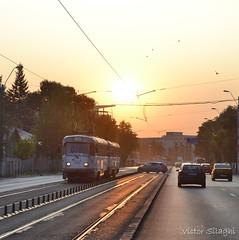 3397+3329 - 25 - 31.08.2017 (VictorSZi) Tags: romania bucuresti bucharest transport publictransport tram tramvai tatra tatrat4r militari summer vara nikon nikond3100 august