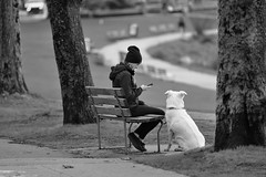"""""""The better I get to know men, the more I find myself loving dogs.""""  -Charles de Gaulle (Zara Calista) Tags: dog girl bench outdoors phone winter d750 nikon white black bw"""