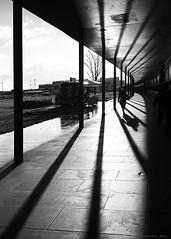 Berlin (ale neri) Tags: street bw airport schonefeld people shadow light berlin deutschland germany aleneri streetphotography blackandwhite alessandroneri