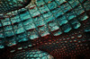 Cambodian Crocodile in the Blue Hour (Dylan H, from the road) Tags: asia texture color animal crocodile cambodia abstract scales blue yellow skin amphibian reptile lizard spots