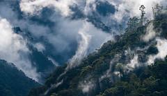 Cloud Forest Landscape Ecuador (www.sanjorgeecolodges.com) Tags: cloud forest landscape ecuador san jorge ecolodge tandayapa luis alcivar photography south america