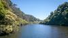 Lower Reservoir (Will Vale) Tags: zealandia karorisanctuary p9 wellington leica huawei karori p9plus