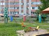 30 (vladimirkazarinov) Tags: tomsk russia northasia siberia