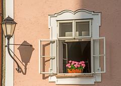 Open Window (fotofrysk) Tags: window lamp light flowers windowbox universitatsplatz easterneuropetrip salzburg austria oesterreich afsnikkor703004556g nikond7100 201709277557