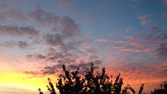 [ Emanations of joy ] (Chris Séhenna) Tags: ciel sky cielo nuages clouds nube arbre tree árbol branches ramas crépuscule sunset puestadelsol