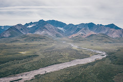 Alaska,Denali National Park