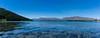 DSC03869-Panorama_ (Tamos42) Tags: newzealand nouvellezélande new nouvelle nouvellezelande zealand zélande zelande tekapo lake lac travel flowers blue cyan bleu road trip