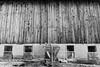 Barn in Black and White (CalTek Design) Tags: barn farm farming farmlife farmscene farmer farms barns barnboard board windows concrete outdoors building ontario rural country canada