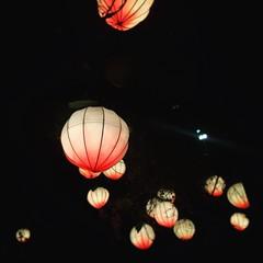 Ohio Chinese Lantern Festival (tenhourclock) Tags: instagram glow night outdoors outside peachlantern peach lantern chineselantern ohio columbus ohiochineselanternfestival