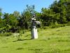 Măgura sculpture camp (cod_gabriel) Tags: măgura buzău buzau judeţulbuzău romania roumanie românia sculpture sculptură arteplastice visualarts tabăradesculptură măgurasculpturecamp bildhauerkunst skulptur escultura scultura szobrászat скульптура 雕塑 beeldhouwkunst heykel rzeźba скулптура